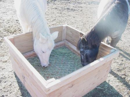 feeder box 2