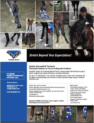Equine Dynasplint Systems
